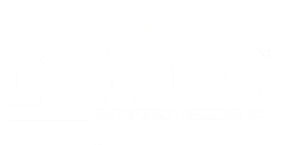 IBMR Logo